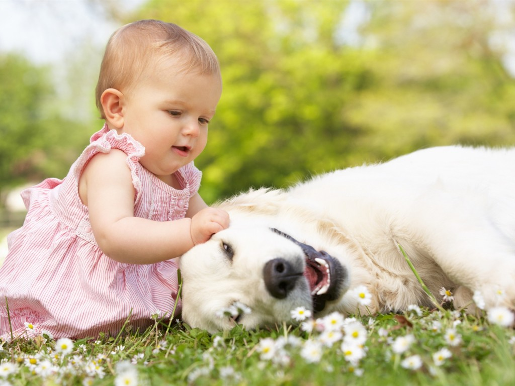 little-beautiful-girl-with-dog_1600x1200