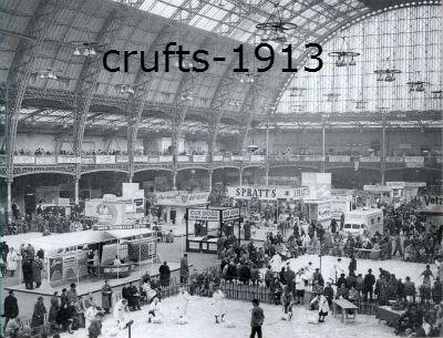 crufts-1913